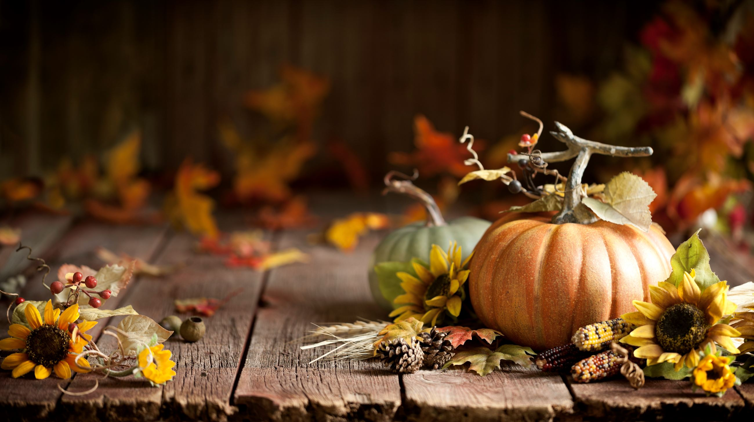 Photo of pumpkin and fall flowers on a porch